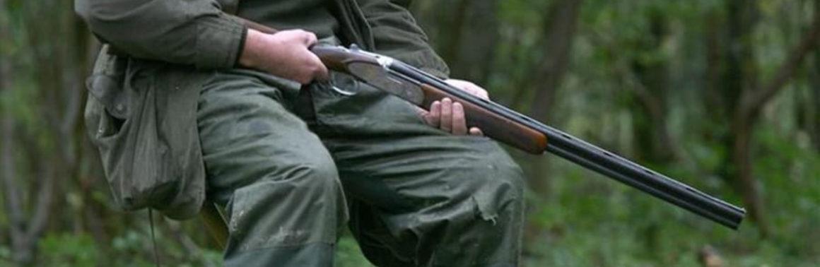 Chasseurs et non-chasseurs peuvent-ils cohabiter ?
